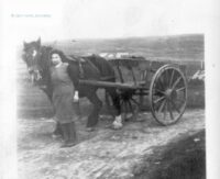 Picture of woman leading a horse and cart, probably 1920s