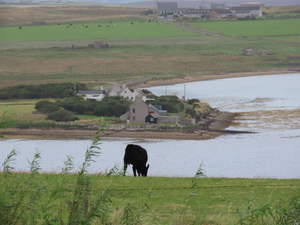 Photograph showing North Ness, schools, former UF Church, wartime remains including oil tank at Lyness, Hoy, Orkney. Taken by Trish Avis, September 2020.