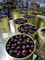 Photo of canned cherries